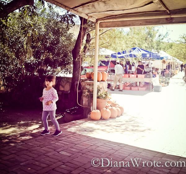 el paso farmers market-9