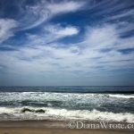Half Moon Bay/Venice Beach