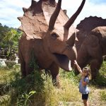 The Triceratops.